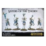 WANDERERS SISTERS OF THE THORN