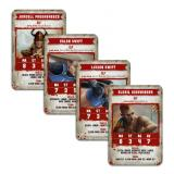 BLOOD BOWL: ELVEN UNION CARDS (ENG)