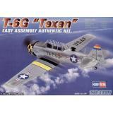 Учебный самолет T-6G