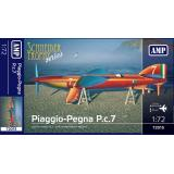 Гидросамолет Piaggio-Pegna P.c.7