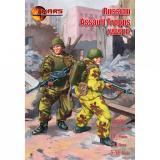 Русские штурмовые части, Вторая мировая война