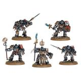 Grey Knights Paladins/Terminators (99120107001)