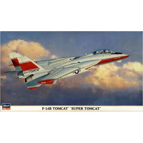 HA00898  F-14B